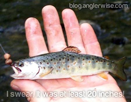 Fishermen Anglers Lie Liars Lying