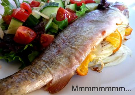 Great Tasting Fish