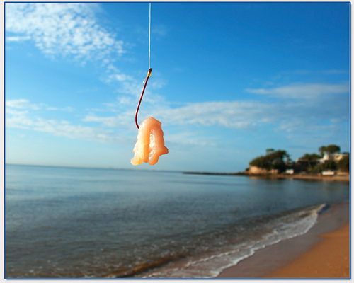 Bait - a Relaxing ultralight fishing technique