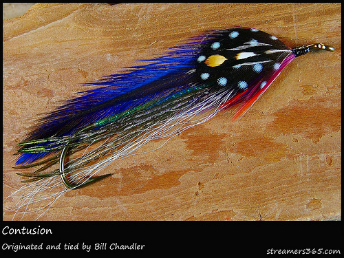 Streamer Fly Lure