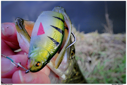 Conventional Ultralight Fishing Lure