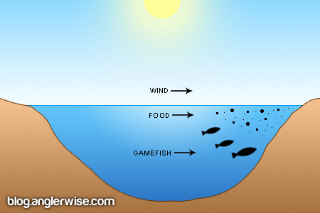 Wind Direction Fishing Diagram