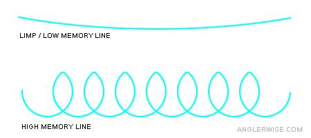 Fishing Line Memory Diagram