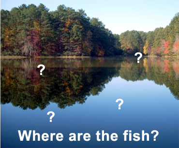 Where Are The Fish?