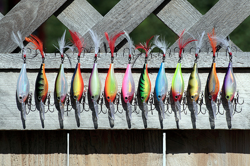 Hard Body Lures - perfect for ultralight fishing